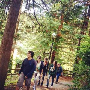 Students in Forest